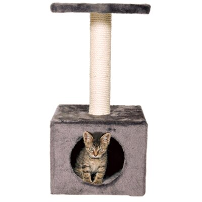 Zamora Kitten Tree Color: Dark Gray