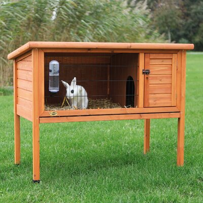 Natural 1 Story Small Animal Hutch Size: 36 H x 45.5 W x 24.75 D