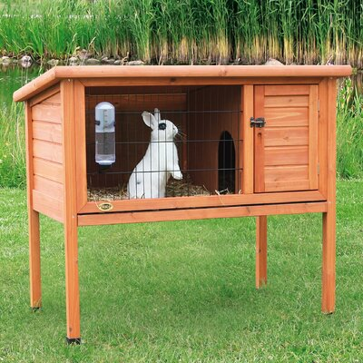 Natural 1 Story Small Animal Hutch Size: 36 H x 40.75 W x 24.75 D