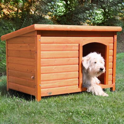 Dog Club House Size: Large (28.25 H x 40.75 W x 26.75 D)