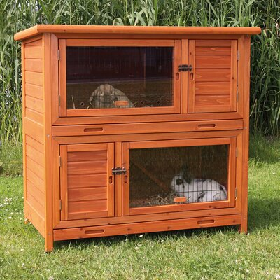 Lowman 2 Story Small Animal Hutch Color: Brown