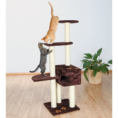 56 Alicante Cat Tree Color: Chocolate Brown