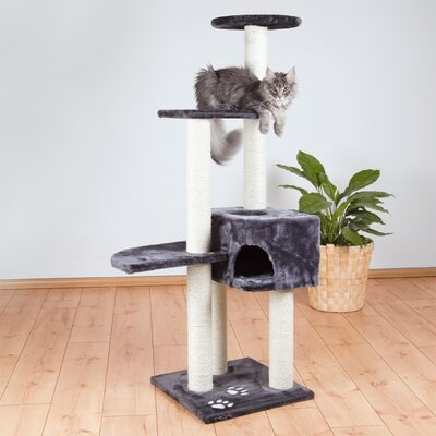56 Alicante Cat Tree Color: Dark Gray