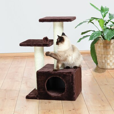 Lyra Valencia 28 Cat Tree Finish: Chocolate Brown