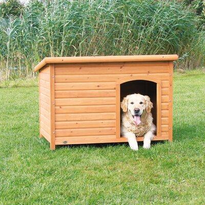 Dog Club House Size: X-Large (32.25 H x 45.5 W x 31 D)