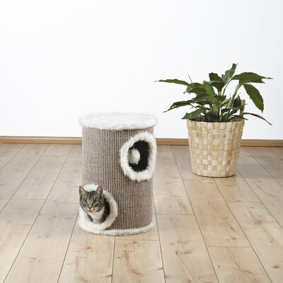 20 Edoardo 2 Story Cat Condo