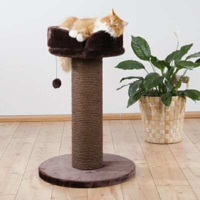 Lyla Pepino Scratching Post