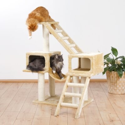 43 Malaga Playground Cat Condo Color: Beige