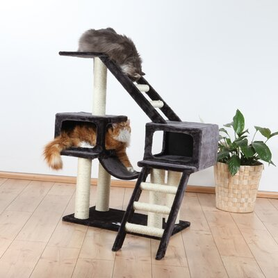 43 Malaga Playground Cat Condo Color: Dark Gray