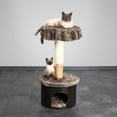39 Meru Cat Tree Color: Marbled Brown-Grey