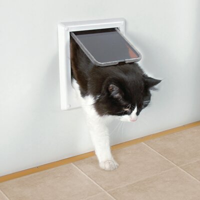 Electromagnetic 4 Way Cat Door