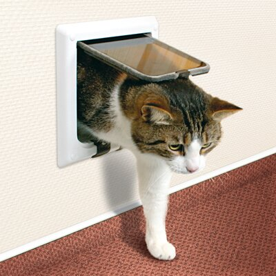 4 Way Cat Door with Tunnel