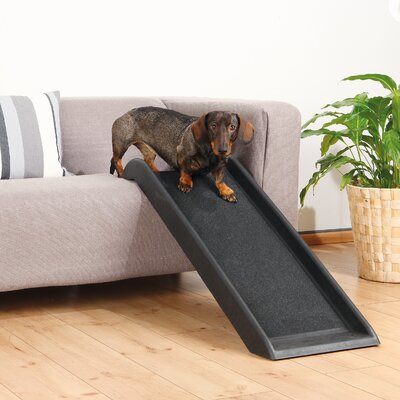 Safety 39 Pet Ramp