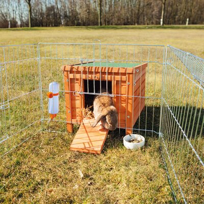 Luellen Small Animal Cage with Outdoor Run