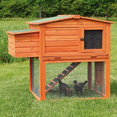 Chicken Coop/House with Outdoor Run