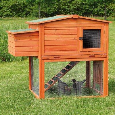 Madeleine Chicken Coop/House with Outdoor Run