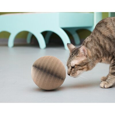 Maximilian Cat Scratching Ball
