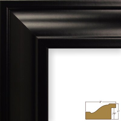2 Wide Smooth Picture Frame