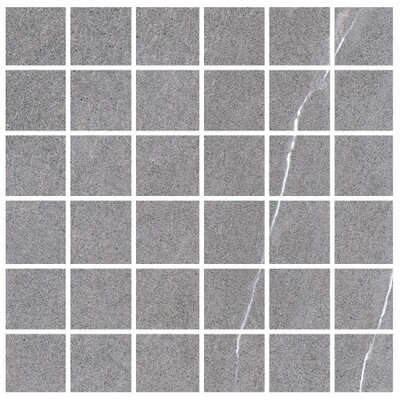 Lifestone 2 x 2 Porcelain Mosaic Tile in Medium Gray