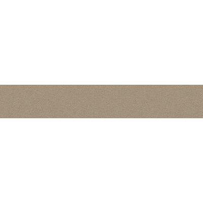 Modern 16 x 3 Bullnose Tile Trim in Viscone