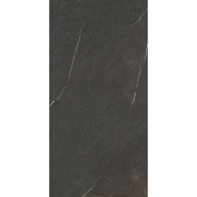 Lifestone 12 x 24 Porcelain Field Tile in Dark Gray