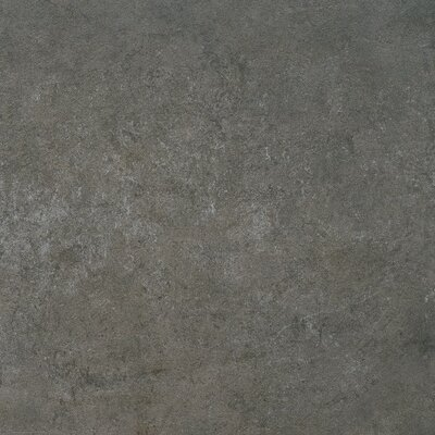 Quarz 18 x 36 Porcelain Field Tile in Antracita