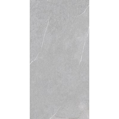 Lifestone 12 x 24 Porcelain Field Tile in Light Gray