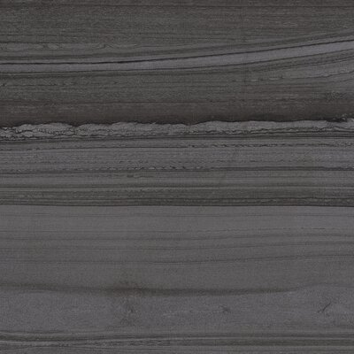Lakestone 12 x 24 Porcelain Wood Look/Field Tile in Pewter