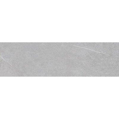 Lifestone 24 x 4 Bullnose Tile Trim in Light Gray