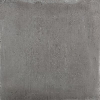 Alive 24 x 24 Porcelain Field Tile in Dark