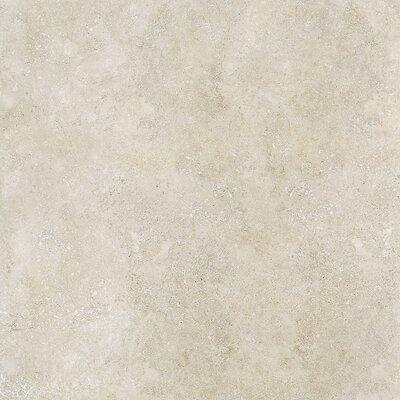 Dolce 18 x 36 Porcelain Field Tile in Malto