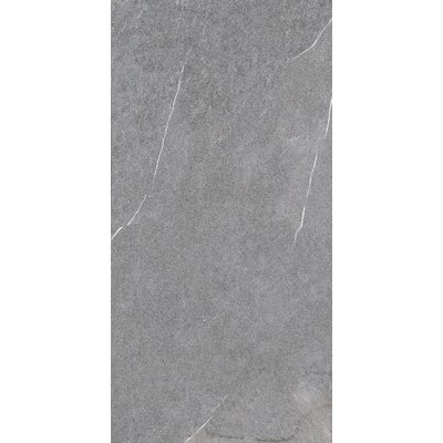 Lifestone 12 x 24 Porcelain Field Tile in Medium Gray
