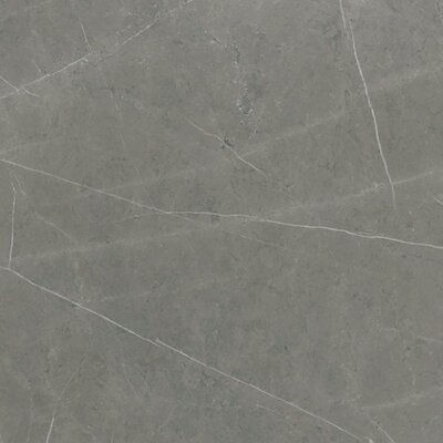 Precious 36 x 36 Porcelain Field Tile in Cenia Dark Gray