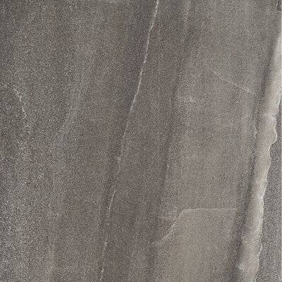 Burlington 24 x 24 Porcelain Field Tile in Dark Gray