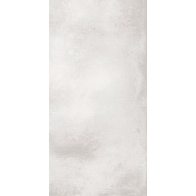 Metal Max 24 x 48 Porcelain Field Tile in Light Gray