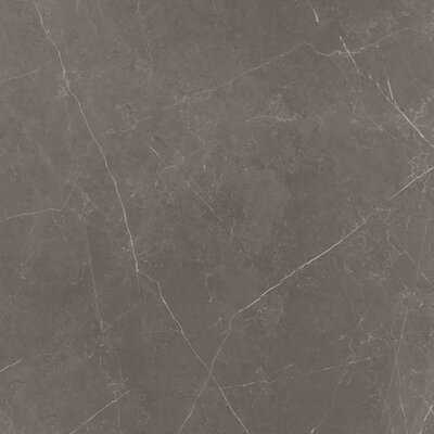 Dreaming 29 x 29 Porcelain Field Tile in Pietra Gray