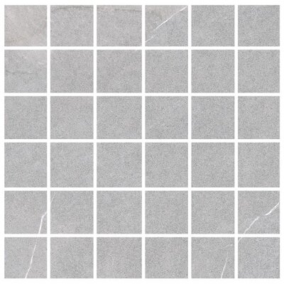 Lifestone 2 x 2 Porcelain Mosaic Tile in Light Gray