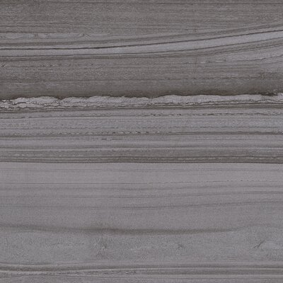 Lakestone 12 x 24 Porcelain Wood Look/Field Tile in Grigio