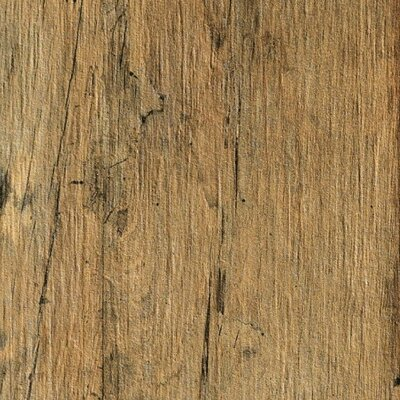 Bio-Recover 8 x 48 Porcelain Wood Look/Field Tile in Golden Flame