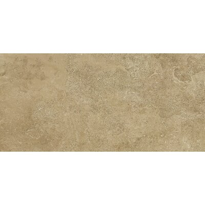 Absolute 18 x 36 Porcelain Field Tile in Nut
