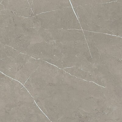 Precious 36 x 36 Porcelain Field Tile in Cenia Gray