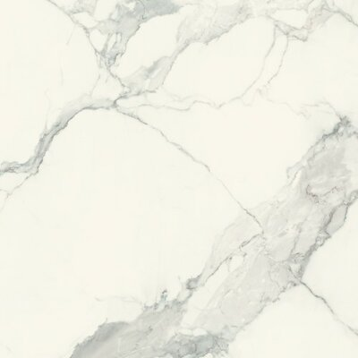 Magnum 32 x 32 Porcelain Field Tile in Classic Statuario