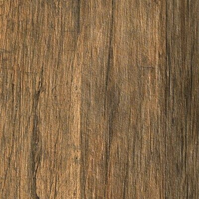 Bio-Recover 8 x 48 Porcelain Wood Look/Field Tile in Old Walnut