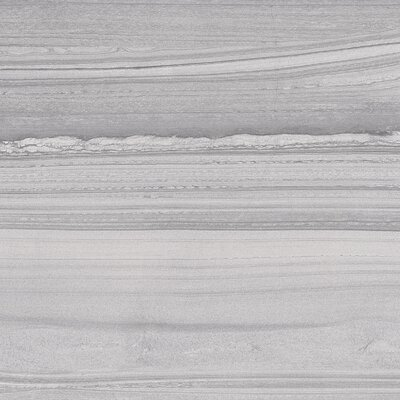 Lakestone 12 x 24 Porcelain Wood Look/Field Tile in Silver
