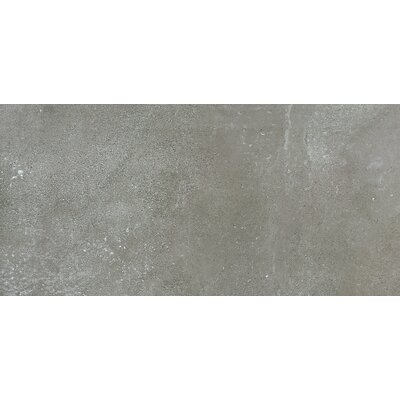 Absolute 18 x 36 Porcelain Field Tile in Cenere