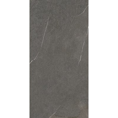 Lifestone 12 x 24 Porcelain Field Tile in Mocha