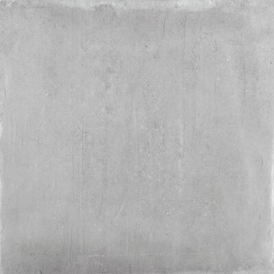 Alive 24 x 24 Porcelain Field Tile in Gray