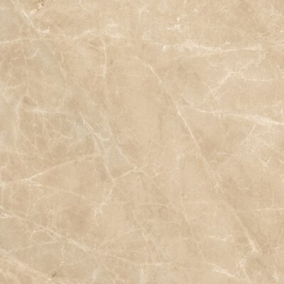 Dreaming 29 x 29 Porcelain Field Tile in Safari