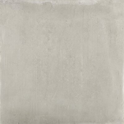Alive 24 x 24 Porcelain Field Tile in Dust
