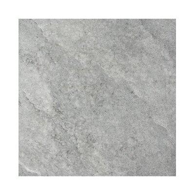 Earth Rectified 16 x 44 Porcelain Field Tile in Gray